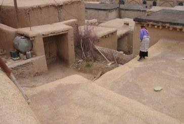 پروژه روستا – روستا قلعه هاشم خان – پروژه کامل روستا